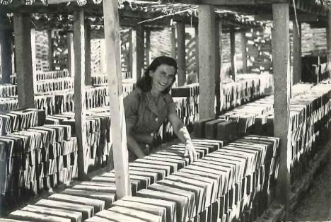 Eleonora Ciccioli, detta Maria, nella fornace Cecchi di Colmurano