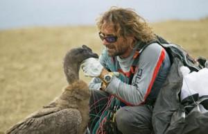 Angelo con un condor