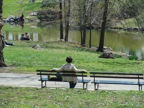 Alba a Central Park
