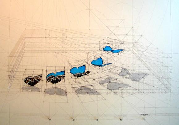 Bellezza in lingua matematica, Marco Biella