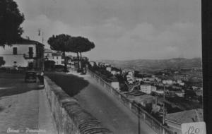 Osimo 5