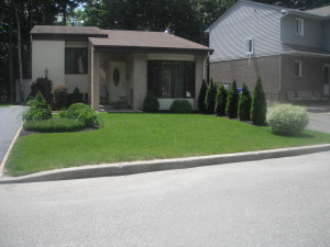 One more picture of the Gatineau neighbourhood that Mariagrazia explored on june 17 (number she judges very irritating)